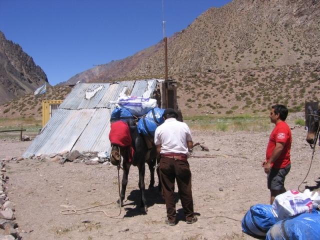 Ładowanie bagażu na muły